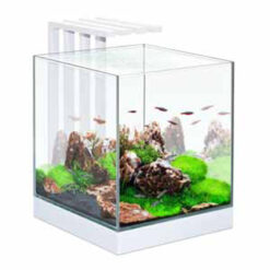 Bể cá cảnh Ciano Nexus 25 LED Aquarium Light 22 Litres Tank White