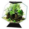 Bể cá cảnh Ciano Nexus Diamond Aquarium 14 Litre