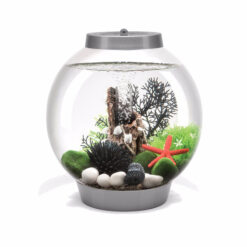 Bể cá cảnh mini BiOrb with Light 15 Litre Coldwater Aquarium Kit