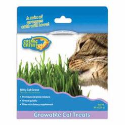 Cỏ lúa mì cho mèo Cosmic Kitty Cat Grass