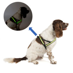 Đai ngực cho chó Dog Walk Reflective LED Flashing Dog Harness