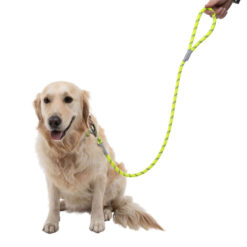 Dây dắt chó Dog Walk Reflective Hi-Visibility Rope Dog Lead Yellow