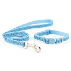 Dây dắt chó kèm vòng cổ Ancol Paw n Bone Small Bite Puppy Collar & Lead Set Blue