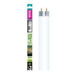 Đèn uvb cho bò sát Arcadia 5% UVB Eurorange Forest Reptile Lamp