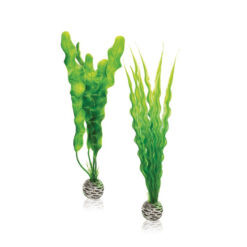 Đồ trang trí cho bể cá BiOrb Plastic Aquarium Plant Pack Medium
