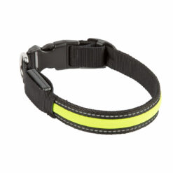 Vòng cổ cho chó Dog Walk Flashing Mesh Dog Collar