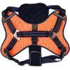 Xích cho chó đai ngực 3 Peaks X-Trail Dog Harness